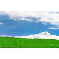 辰山植物园积极研发土改技术 推进园区土壤改良ballbet体育有序进行