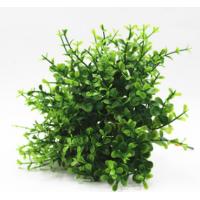迷你仿真植物小盆栽插花装饰草小10叉仿真尤加利叶子